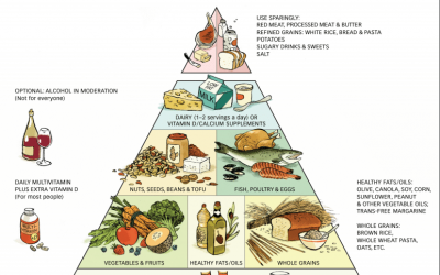 Interview With Harvard Professor of Medicine Dr. Walter Willett Talks About What We Should Eat