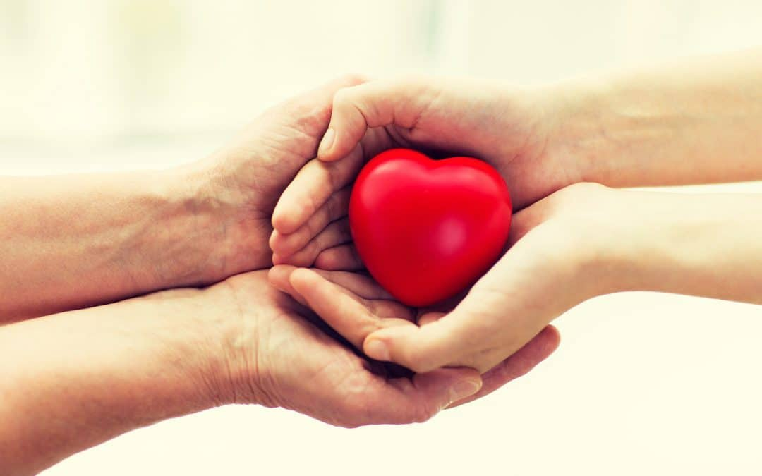 Heart Health: Fun Facts, Tips, and More for Your Ticker