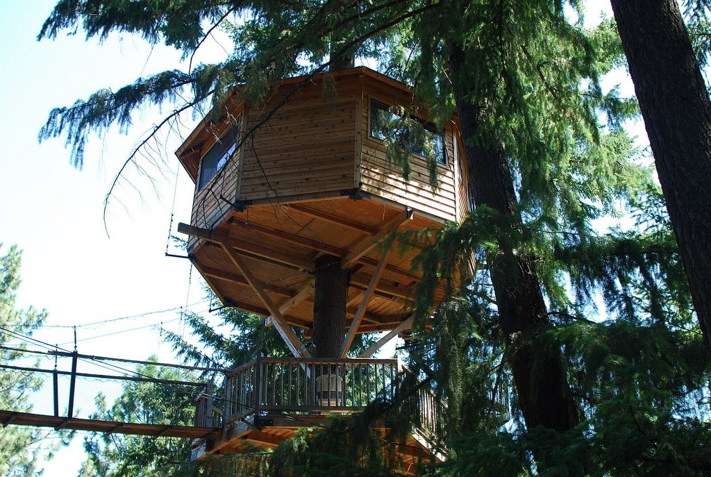 Treehouse Tiny House