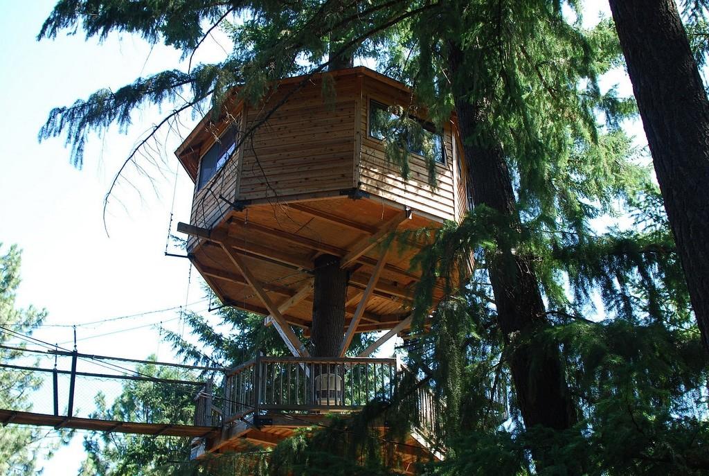 Treehouse Tiny House