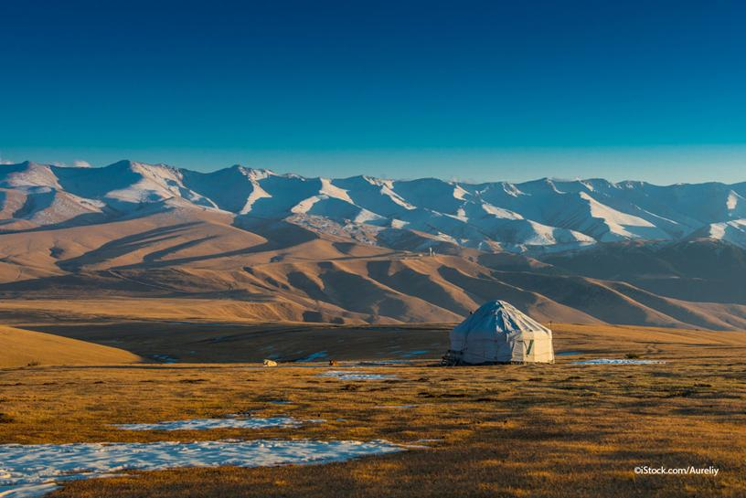 the Mongolian Steppe