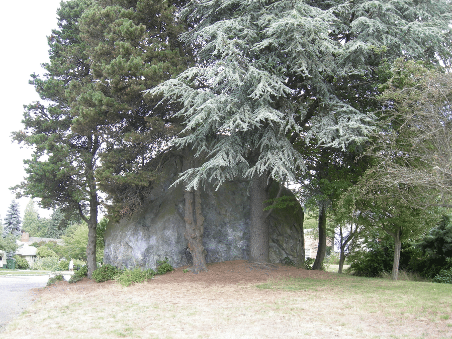 wedgewood rock