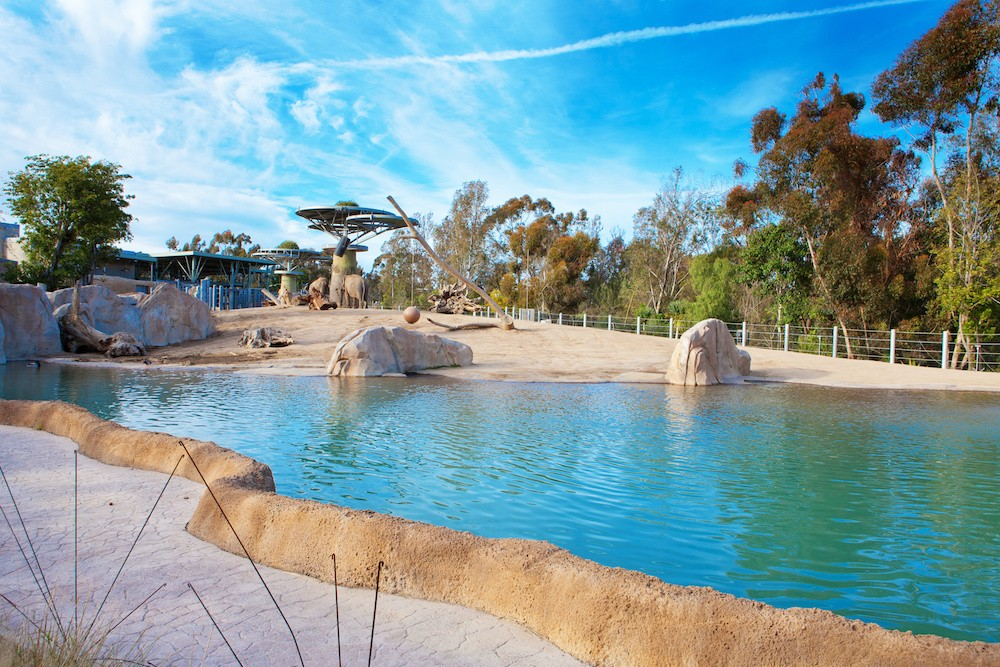 Beautifully designed elephant aviary with pond and rocks. San Diego Zoo